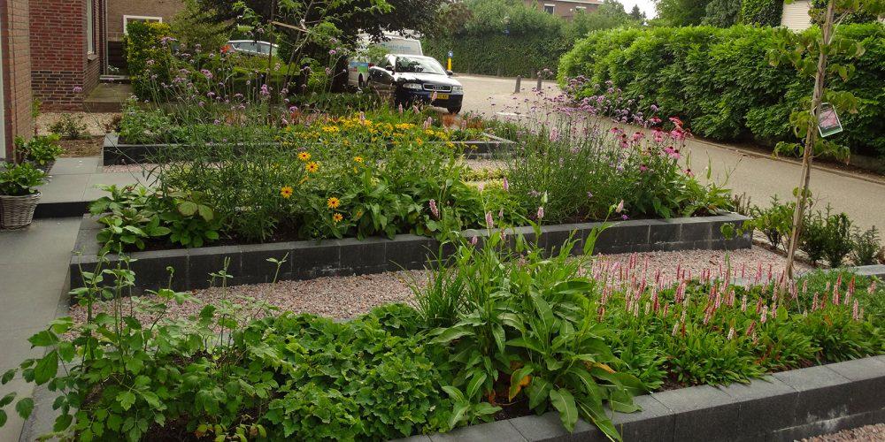 Moderne tuin met natuurlijke touch